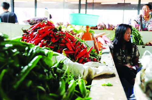 c46bf3148 Chilli import ban on but no sight of local winter chillies yet – The ...